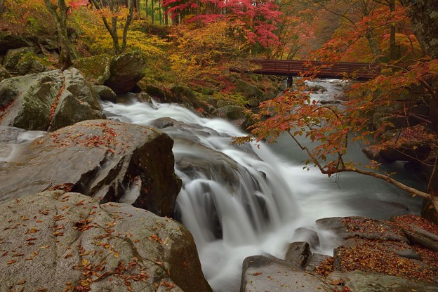 白水轟き秋終う