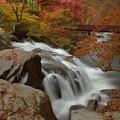 写真: 白水轟き秋終う