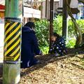 写真: DSC00755 幼子と遊ぶ