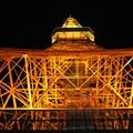 Photos: 夜の東京タワー