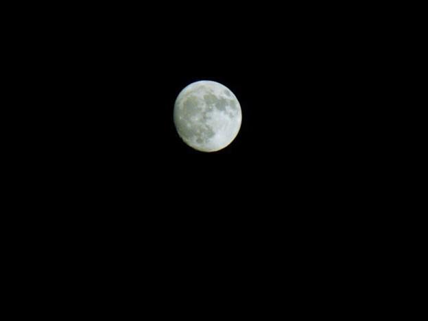 14夜の月