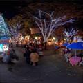 Photos: 2014年11月23日 青葉シンボルロード  イルミネーション 360度パノラマ写真(2) HDR