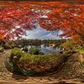 駿府城公園 紅葉山庭園の紅葉 360度パノラマ写真(1)