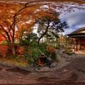 駿府城公園 紅葉山庭園の紅葉 360度パノラマ写真(2)