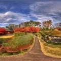 駿府城公園 紅葉山庭園の紅葉 360度パノラマ写真(4)