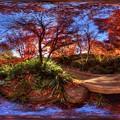 駿府城公園 紅葉山庭園の紅葉 360度パノラマ写真(6)