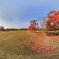 奈良公園 紅葉〈1〉 360度パノラマ写真