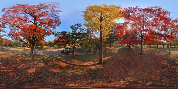 奈良公園 紅葉〈4〉 360度パノラマ写真