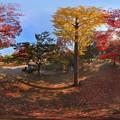 Photos: 奈良公園 紅葉〈4〉 360度パノラマ写真