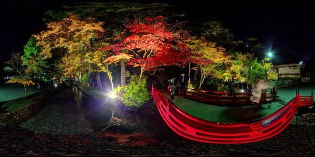 小国神社 紅葉 赤橋付近 ライトアップ 360度パノラマ写真