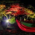 Photos: 小国神社 紅葉 赤橋付近 ライトアップ 360度パノラマ写真