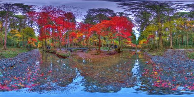 森町 小国神社 紅葉 360度パノラマ写真(3)