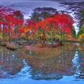 Photos: 森町 小国神社 紅葉 360度パノラマ写真(3)