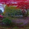 写真: 洞慶院 紅葉  360度パノラマ写真〈4〉