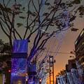 写真: 青葉シンボルロード イルミネーション(2)