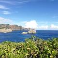南島からのハートロック