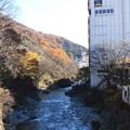 利根川と山