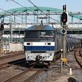 Photos: 5582レ EF210-117牽引 (2)