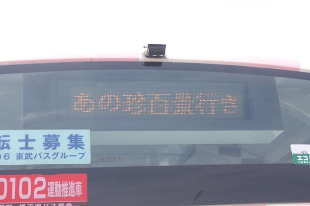 東武バス 「あの珍百景行き」表示