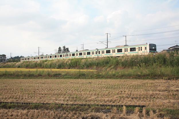 稲刈り後の田んぼを行くE501系 (2)