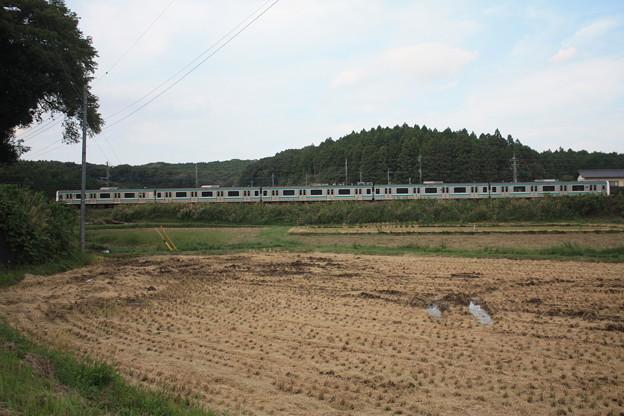 稲刈り後の田んぼを行くE501系 (5)