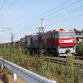 安中貨物 5094レ EH500-81牽引 (5)
