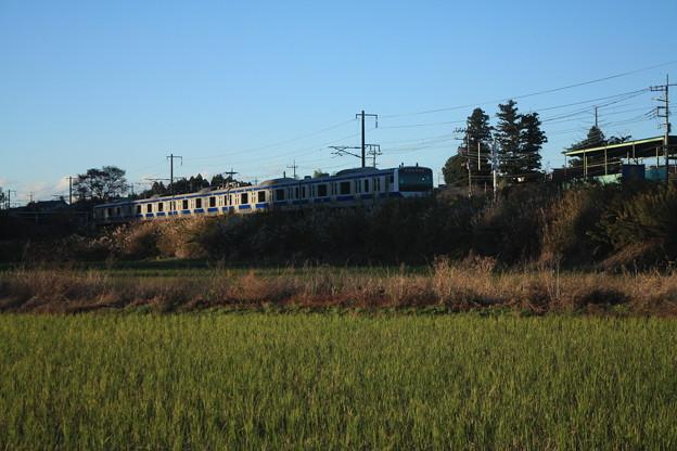 秋の田園風景を走りゆくE531系 (2)