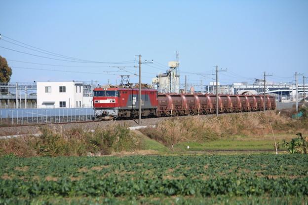 畑の中を行くEH500-14牽引5094レ安中貨物 (2)