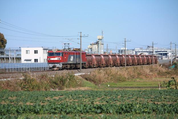 畑の中を行くEH500-14牽引5094レ安中貨物 (3)