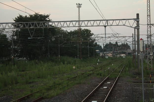 友部駅の線路に雑草が (3)