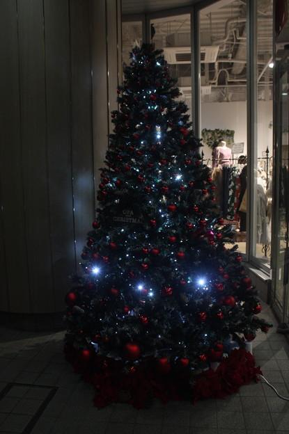 水戸駅南口前のクリスマスツリー