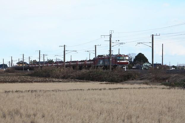冬の田園風景を行くEH500-4牽引5094レ安中貨物