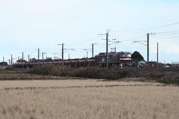 冬の田園風景を行くEH500-4牽引5094レ安中貨物 (1)