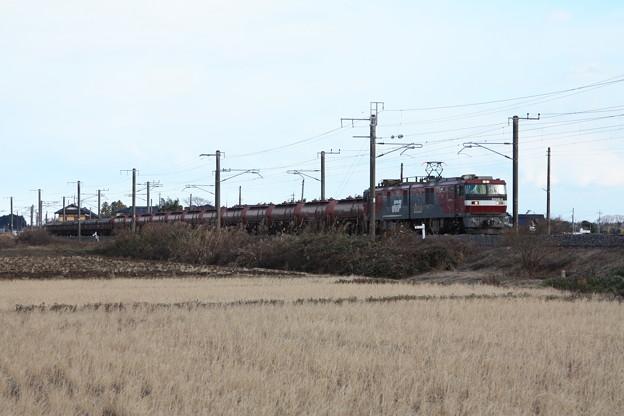 冬の田園風景を行くEH500-4牽引5094レ安中貨物 (3)