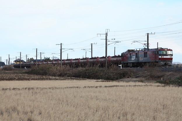 冬の田園風景を行くEH500-4牽引5094レ安中貨物 (6)