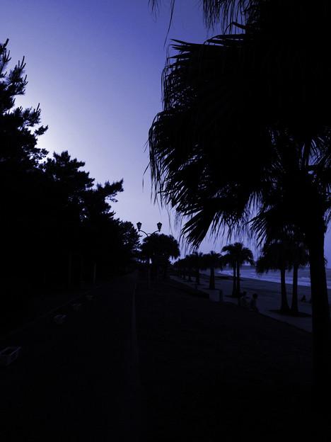 Photos: After Dark