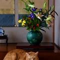 写真: お正月の花と福嗣