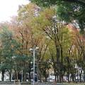 久屋大通り公園~