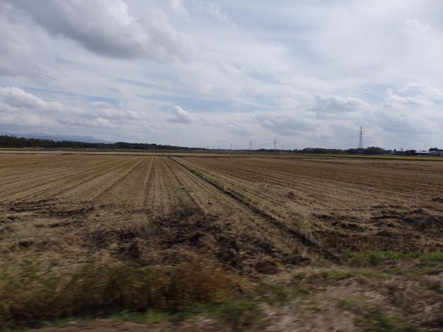 稲刈りの終わった田んぼと雲と