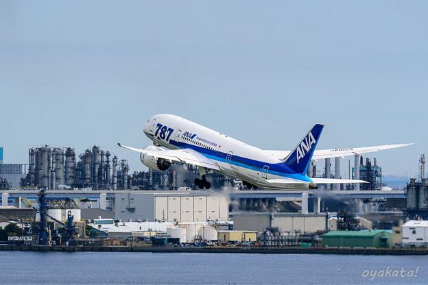 290818-羽田空港19
