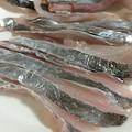 写真: 太刀魚のお造り
