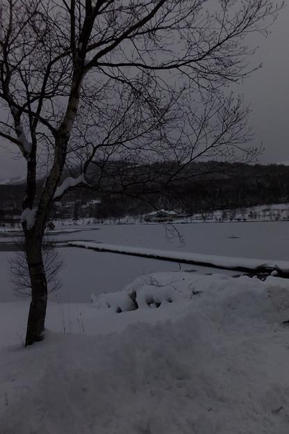 もはや氷と雪に覆われた白樺湖