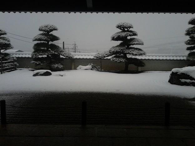 日本の四季は本当に美しい