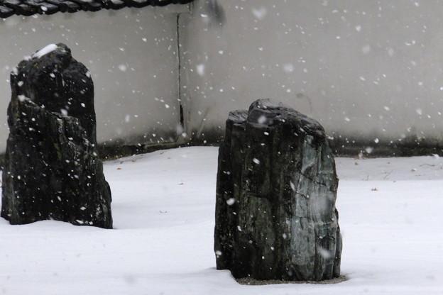 気温は寒いがなぜか見ていると心暖まる石庭