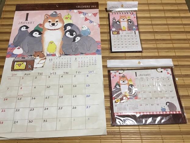 これも柴わんこカレンダー!?