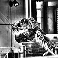 「恐竜を飼う家」