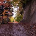写真: 紅桜公園/錦秋 10/山の散策路