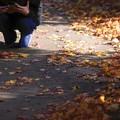 秋を撮る final