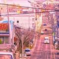 写真: 小樽 FUNAMIZAKA