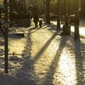 写真: 冬/少しだけ温かい光 2
